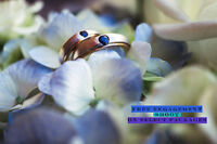 SPECIAL! Wedding Photography/DJ Premium services combo deal!