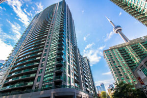 Fully Furnished Two Bedroom Two Washroom Condo close to Union St