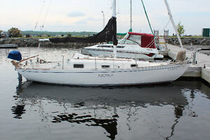 Contessa 26 for sale