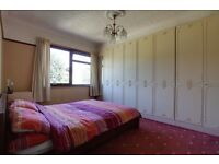 ONE LARGE DOUBLE ROOM WITH BUILT IN WARDROBE