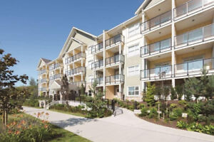 $1800/2BR - Brand New Apartment for Rent in Murrayville