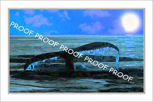 Stunning Whale Art