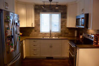 Renovate your kitchen by a professional!