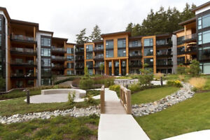 Luxury 2 bed, 2 bath condo at The Royce, White Rock