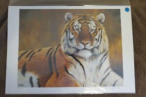 """Limited Edition print - Cyril Cox - """"Eyes of the Wild"""""""