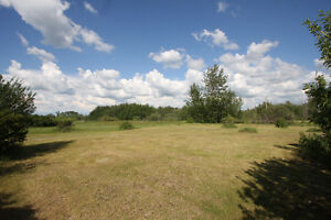 Lot Bordered by Wildlife Reserve at Buffalo Lake - Pelican Point
