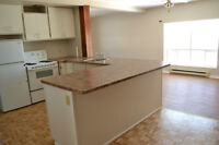 Bright Open-Concept Apartment - Utilities Incl- Available Sept 1