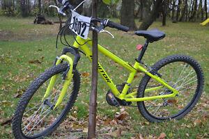 """24"""" Norco mountain bike"""
