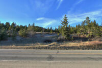 Peachland 10 acre property