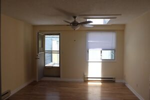 Newly Renovated Studio Apartment For Rent On Queen West