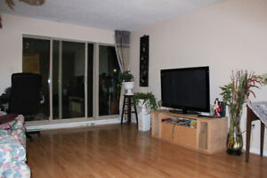 Furnished two bedroom apartment for RENT