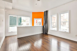 Beau 2 cac + parking Griffintown nice 2br + parking