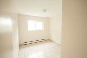 Jan 1st - Renovated Large One Bedroom Apartment London Ontario image 3