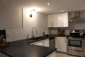 2 Bedroom Open Concept Basement Apartment of House for Rent