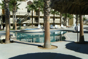 Condo For Rent in San Jose Del Cabo, Mexico (BCS) ($75.00
