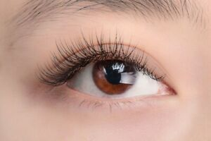 Eyelashes extension promotion for this month