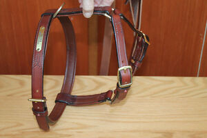 HANDMADE CUSTOM LEATHER DOG COLLARS,LEASHES, BELTS & HARNESS Peterborough Peterborough Area image 4