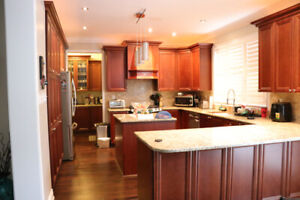 Kitchen Cabinets, Countertops, Cooktop - 100% Wood