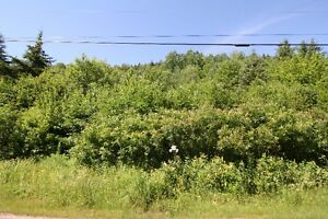 1.7 acre lot just past Poley Mountain