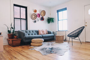 Fully renovated 2 bedroom home at Ossington+Dupont