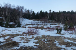 3/4 acre Lot overlooking pond in Spaniards Bay MLS 1151519