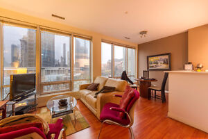 Downtown Vancouver fully Furnished 1 bedroom apt.