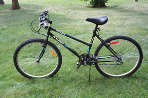 """26"""" Raleigh Portage"""