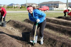 Meals on Wheels Garden Coordinator - Breslau