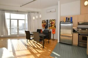 Topfloor condo  Old Montreal, Dogs welcome bienvenue aux chiens.