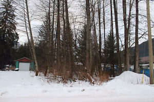 building lot for sale in Stewart, BC