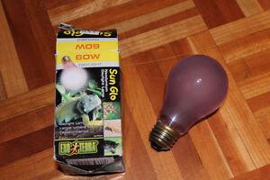 Ampoule lumière du jour pour reptiles