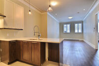 PRIME NDG-FULLY RENOVATED