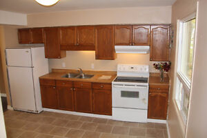 ** Spacious and Renovated ** 2-Bedroom Townhome in Alvinston **