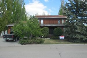 JUST REDUCED!!! 22 Dunfield Cres Meadow Lake