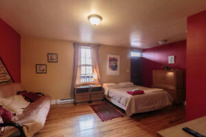 PROMO!!! Furnished studio DOWNTOWN ( 25$\night ! )