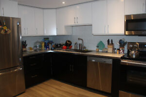 Renovated 3 Bedroom Apartment- Available May 1/19