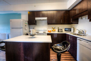 Luxury Apartment*En-suite Washroom*Comparable Price*Cash Back Kitchener / Waterloo Kitchener Area image 6