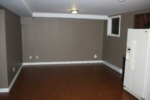 One Bedroom Basement Apartment in Paradise St. John's Newfoundland image 2