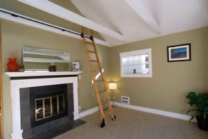 DO you need painter