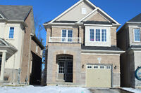 GEORGETOWN 4 BDRM DETACHED HOME BACKING ONTO FOREST