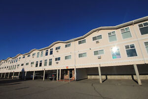 Great Investment or First Time Homebuyer Apartment!