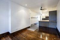 Appartement à louer à Rosemont/La PetitePatrie (JUIN)
