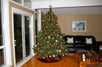 Christmas Tree by Balsam Hill