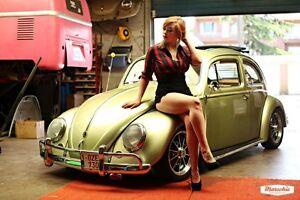 cherche  beetle  1950 a 1979
