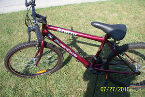 Lots of Various Bicycles For Sale (good shape) Sarnia Sarnia Area image 6