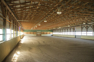 One on one riding lessons- October discount Peterborough Peterborough Area image 5