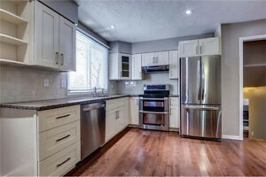 Bring a new kitchen home today! solid wood cabinets on sale