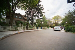bright basement apartment In Vibrant Cabbagetown