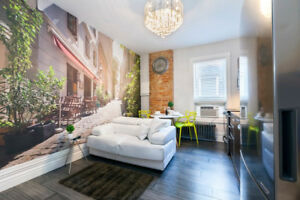 Fully Furnish 3D Luxury 1 BR Apartment Downtown All Inclusive.