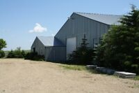 Horse Boarding Available in Heated Barn with Indoor Arena